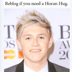 oh you know....wouldn't hurt <<< I just seriously... SERIOUSLY NEED A HORAN HUG.