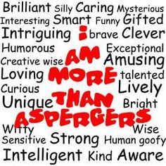 I am more than Asperger's Car Magnet 20 x 12