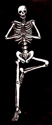 A great set of yoga skeletons from the Heavy Metal Yogi blog