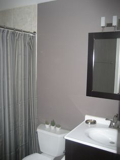 Lighter bathroom color idea for powder room or small bathroom and contrast with black shelving or mirror.