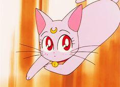 It's Moon Revenge Diana Sailor Moon, Sailor Moon Screencaps, Best Heroine, Sailor Scouts, Anime, Furry Art, Revenge, Pop Art, Pikachu