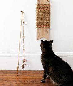 13X dierendag DIY's, purr-fect voor katten   Fashionlab
