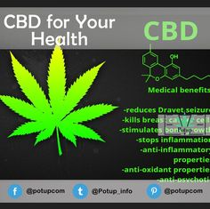 More and more scientific research is showing that cannabidiol oil, or CBD as it is often called, has a range of common health benefits.