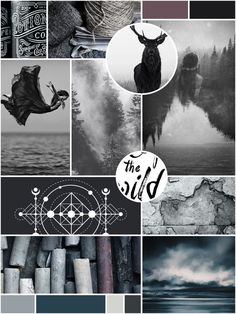 Dark Wild Waters Inspiration Board by Freckled Design Studio. Click through to see the full brand reveal!