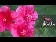 How To Make Crepe Paper Hibiscus Flowers - YouTube