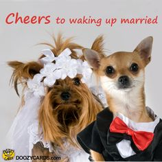 Cheers to waking up married, View the Popular Cheers to waking up married eCard