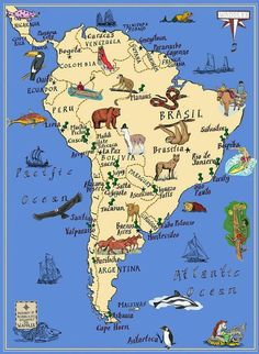 Hill - Map of South American animals South America Map, America City, South America Animals, Arte Latina, Titicaca, Geography Map, American Animals, New Travel, Fauna