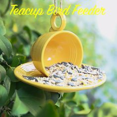 A simple bird feeder, using only a teacup and saucer