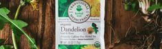 A Peek Inside: Dandelion Leaf