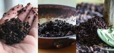 5 Reasons Why You Should Never Throw Out Used Coffee Grounds « Food Hacks