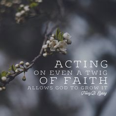 """Acting on even a twig of faith allows God to grow it."" - Henry B. Eyring LDS Quotes #lds #mormon #christian"