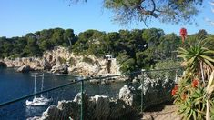 Le Sentier du Littoral, Cap d'Antibes - 2020 All You Need to Know Before You Go (with Photos) - Antibes, France Provence, Cap D Antibes, What To Do Today, Le Cap, Great Walks, Clear Blue Sky, Attraction, French Riviera, Great View