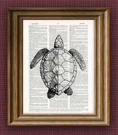 SEA TURTLE beautifully upcycled vintage dictionary page book art print x 11 Raccoon Illustration, Turtle Love, Dictionary Art, Pottery Classes, Sea Art, Pottery Painting, Upcycled Vintage, Art Lessons, Book Art