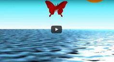 [Stress et Agressivité] : un vidéo pour pratiquer la cohérence cardiaque avec les enfants