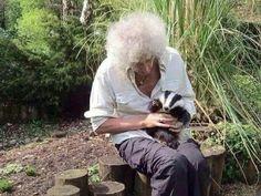 Brian May badger man (Of Queen) Queen Mercury, Queen Freddie Mercury, I Am A Queen, Save The Queen, Queen Queen, Freddie Mercuri, Princes Of The Universe, Queen Brian May, Ben Hardy