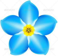 1000 Images About Flowers On Pinterest Flower Drawings Forget Me Not And Simple Flower Drawing
