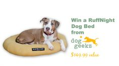 Win a chew-resistant dog bed from Dog GeekZ ($149.99 value)!
