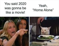 Confused cat has been one most hilarious memes of 2019 and the best part it could fit any funny moment. Here are confused cat at dinner memes. Stupid Funny Memes, Funny Relatable Memes, Funny Posts, Funny Shit, The Funny, Funniest Memes, Funny Stuff, Memes Humor, Cat Memes