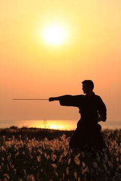 To practice my swordsmanship in the very birth place of code to which I owe my life. An honor hard to surpass.