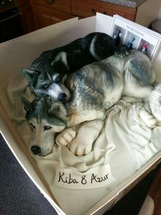 Husky cake by the cake illusionist