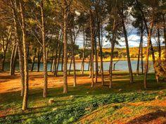 La Mancha húmeda | Wet La Mancha  Laguna Batana  Parque Natural de las Lagunas de Ruidera  #lagunasderuidera #mobilephotography #nature
