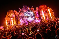 2015 | Tomorrowland nightlife europe