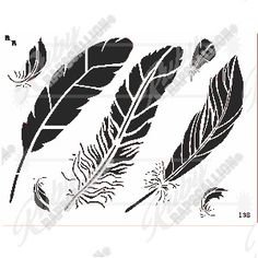 Feathers symbolize flight and freedom. Feather Stencil, Stencil Material, Feathers, Rooster, Stencils, Freedom, Cover Up, Quill, Liberty