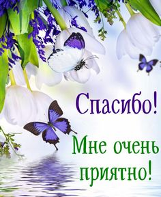 Happy Birthday Good Wishes, Happy Birthday In Russian, Montreal Botanical Garden, Thanks Card, Good Morning Photos, Clever Quotes, Positive Quotes, Congratulations, Greeting Cards