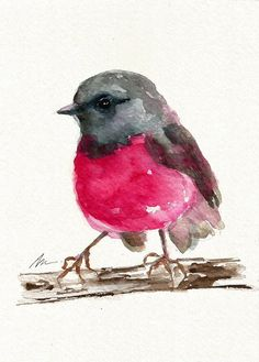Bird ORIGINAL Watercolor Painting Cute Pink Robin by NuFineArt5