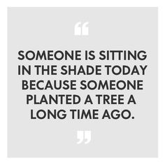 Someone is sitting is the shade today because someone planted a tree a long time ago.