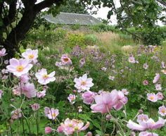 The beautiful walled garden at Cambo by Paul Leitch