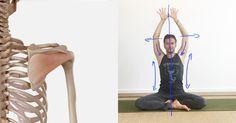 Diese 8 Yoga-Übungen für Schultern und Nacken helfen bei Verspannung und befreien von Rückenschmerzen. Probier's aus inkl. Anatomie-Grundlagen und Übungsvideo