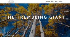 The Trembling Giant - Tales by Trees Come Fly With Me, Aspen, Whisper, Mysterious, Utah, Mystery, National Parks, Articles, Trees