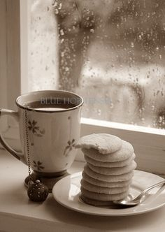 Bone-chilling rainy day...hot tea and cookies to the rescue..