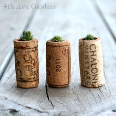 Pack of 3 Succulents In Upcycled Cork Planters. $9.00, via Etsy.