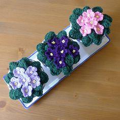 [Free Pattern] Crochet African Violet Flower - Knit And Crochet DailyKnit And Crochet Daily
