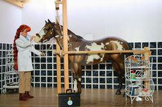 Veterinary clinic by Shelfi - model horse