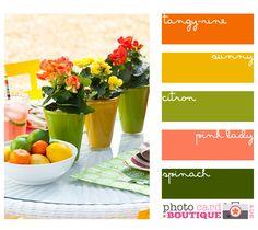 Citrus colors.