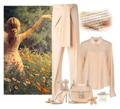"""""""A Summer Day"""" by katiethomas-2 ❤ liked on Polyvore featuring мода, Chloé, Gianvito Rossi, women's clothing, women's fashion, women, female, woman, misses и juniors"""
