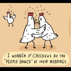 Chicken Humour @Lane McMaster - tell me you're doing the chicken dance at your wedding this weekend!!!