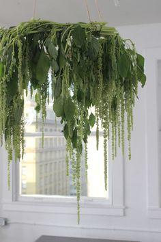 Hanging Amaranthus Chandelier