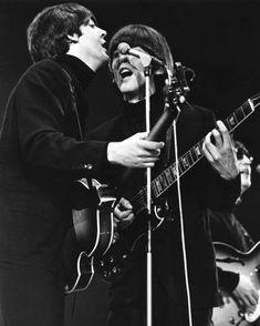 Beatles Poster, The Beatles, Beatles Photos, Ringo Starr, George Harrison, Paul Mccartney, John Lennon, Art Music, Gloss Matte