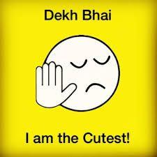 Dekh Bhae Dekh Behen Dekh Pagli Funny Facebook and Whastapp trolls Images