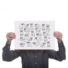 pug positions