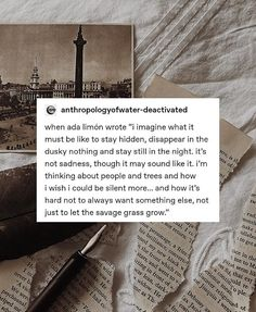 Pretty Words, Beautiful Words, Cool Words, Writing Words, Writing Poetry, Poetry Quotes, Book Quotes, Student Memes, Literature Quotes