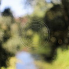 River Chelmer Abstract 4