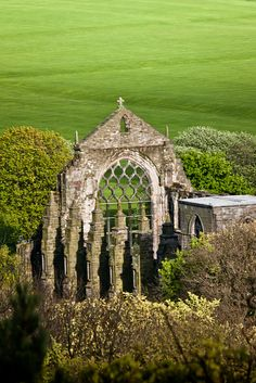 Ruins in Green    		The Holyrood Abbey in Edinburgh. Lovely green, isnt it?