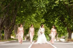 Large trees growing over the road, wedding photo location. Photography by DeRay & Simcoe. Photographer Branding, Growing Tree, Bridesmaid Dresses, Wedding Dresses, Photo Location, Perth, Portrait Photographers, Wedding Photos, Trees