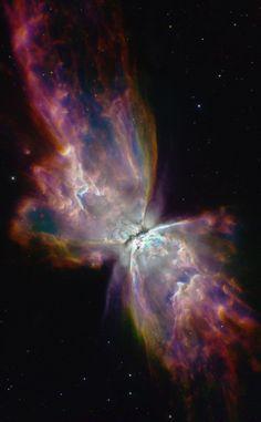 NGC 6302 Butterfly Nebula Credit: (Frank_) | AstroBin