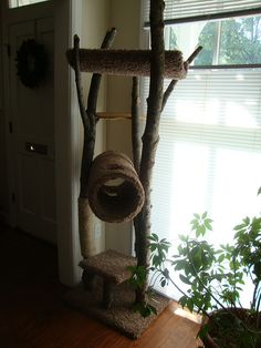A homemade rustic cat tree. Cat tree makers state their cat loves this. Cool Cat Trees, Cool Cats, Animal Projects, Diy Projects, Diy Cat Tower, Palette, Diy Stuffed Animals, Cat Love, Crazy Cats